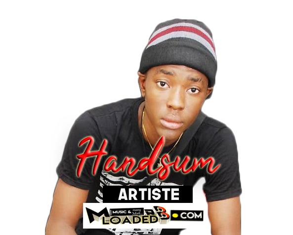 Handsum – Profile
